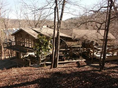 Eureka Springs Single Family Home For Sale: 1002 County Road 153