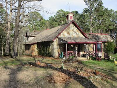 Eureka Springs Single Family Home For Sale: 53 Mundell RD