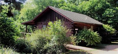 Eureka Springs Single Family Home For Sale: 378 County Road 340