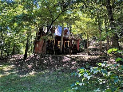 Eureka Springs Single Family Home For Sale: 361-362 Hidden Hollow RD