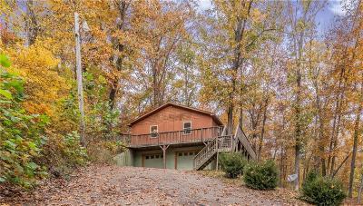 Eureka Springs Single Family Home For Sale: 342 CR 1361