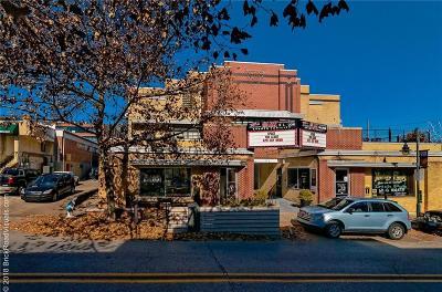 Fayetteville Condo/Townhouse For Sale: 644 W Dickson ST Unit #203 #203