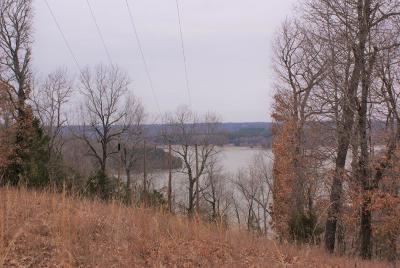 Rogers Residential Lots & Land For Sale: Lot 25 & 26 Emerald Bay