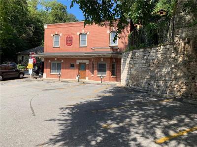 Eureka Springs Single Family Home For Sale: 7 Pine ST