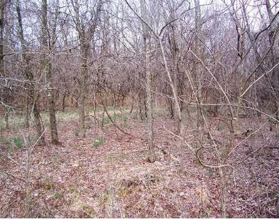 Residential Lots & Land For Sale: Lots 159/160Huckleberry &132/133Raspberry Cir