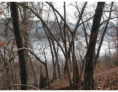 Eureka Springs, Rogers, Lowell Residential Lots & Land For Sale: Schulz Dr
