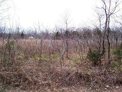 Residential Lots & Land For Sale: Lot 158 Arabian Dr