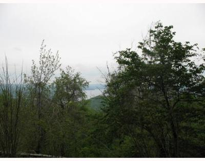 Residential Lots & Land For Sale: Lot 3 and 4 Timberline DR