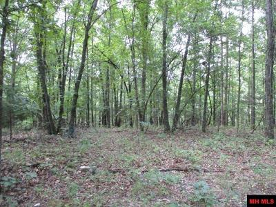 Residential Lots & Land For Sale: Hillbilly Hollow Lane