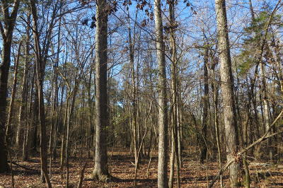 Dover Residential Lots & Land For Sale: Forestry Road