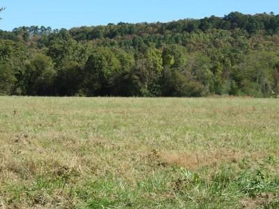 Clarksville Residential Lots & Land For Sale: Taylor Road