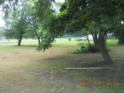 Dardanelle Residential Lots & Land For Sale: Pecan St