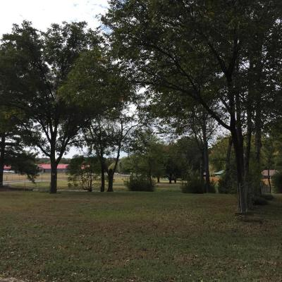 Russellville Residential Lots & Land For Sale: 410 S Jonesboro Avenue