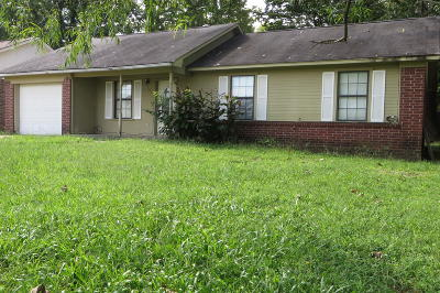Russellville Single Family Home For Sale: 704 Shadow Drive