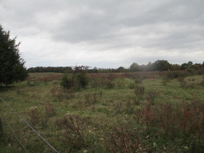 Residential Lots & Land For Sale: Vaughn Circle