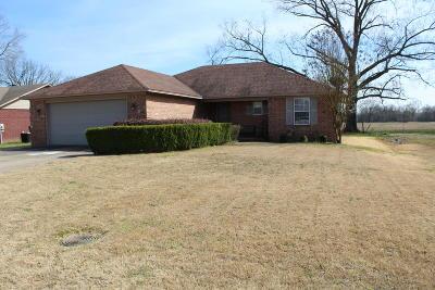Pottsville Single Family Home For Sale: 63 Blue Bonnet Drive