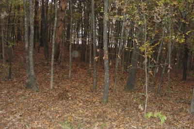 Dardanelle Residential Lots & Land For Sale: Hwy 22