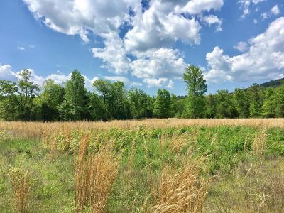 Clarksville Residential Lots & Land For Sale: 40 Acres Off Cr 4491
