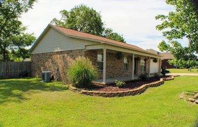 Pope County Single Family Home For Sale: 443 Maggie Loop