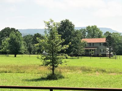 Dardanelle Single Family Home For Sale: 10600 Pool Hollow Road