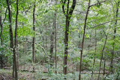 Russellville Residential Lots & Land For Sale: 749 Mill Creek Drive