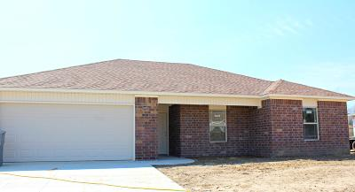 Dardanelle Single Family Home For Sale: 401 Willow Creek Drive