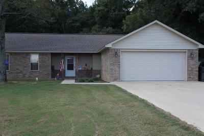 Pottsville Single Family Home For Sale: 262 Letta Dr