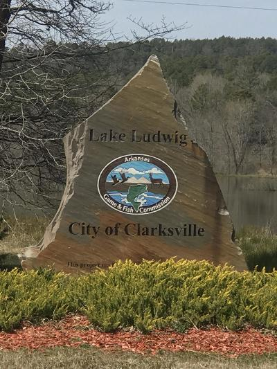 Clarksville Residential Lots & Land For Sale: Lot 21 461 Cr 3468