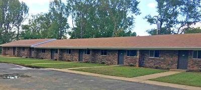 Russellville Multi Family Home For Sale: 909-919 E F