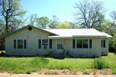 Single Family Home For Sale: 411 Dorsey