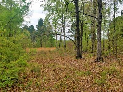 Dekalb Residential Lots & Land For Sale: 435 County Road 3213