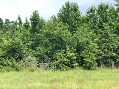 Miller County Residential Lots & Land For Sale: Hwy 160/197