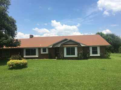 Hooks Single Family Home For Sale: 1020 Palmer