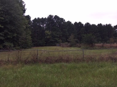 Residential Lots & Land For Sale: Lodge St.