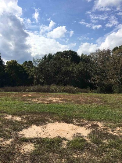 Residential Lots & Land For Sale: 4750 S State Line