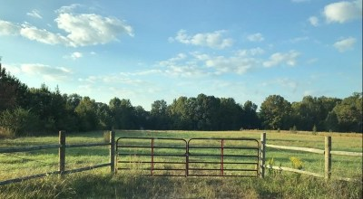 Red River County Residential Lots & Land For Sale: County Road 1701