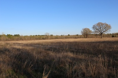 Dekalb TX Residential Lots & Land For Sale: $80,000