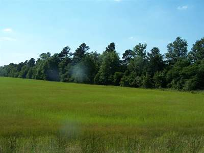 Little River County Residential Lots & Land For Sale: Tbd Hwy 32 E.