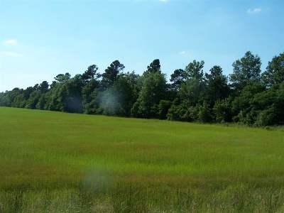 Ashdown Residential Lots & Land For Sale: Tbd Hwy 32 E.