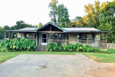 Single Family Home For Sale: 120 U.s. Hwy 82e