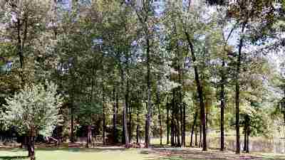 Cass County Residential Lots & Land For Sale: 1254 County Road 4224