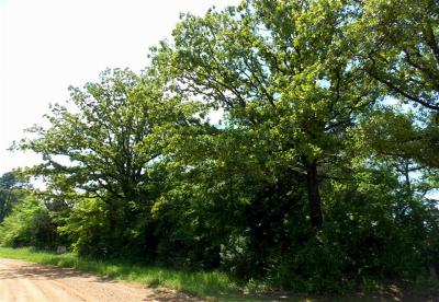 Residential Lots & Land For Sale: County Road 4249