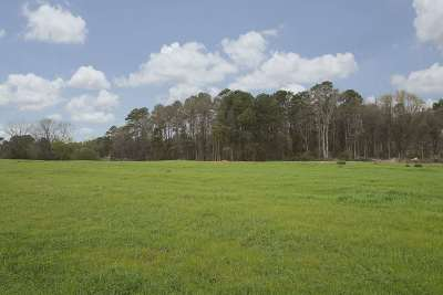 Residential Lots & Land For Sale: Gibson Ln.