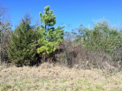 Residential Lots & Land For Sale: County Road 4251