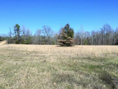 Residential Lots & Land For Sale: County Road 4251 & County Road 4351