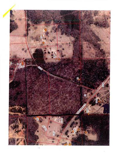 Miller County Residential Lots & Land For Sale: 30 Acres Hwy 196