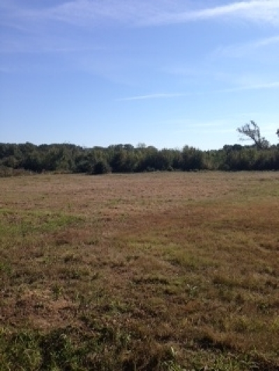 Commercial For Sale: 1.25 Ac E Hoskins