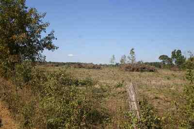 Residential Lots & Land For Sale: County Road 4153 #CR 4221