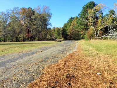 Residential Lots & Land For Sale: County Road 4122