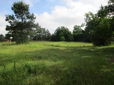 Maud Residential Lots & Land For Sale: Tbd County Road 1202